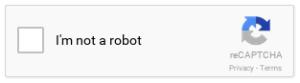 google-recaptcha-example-v2